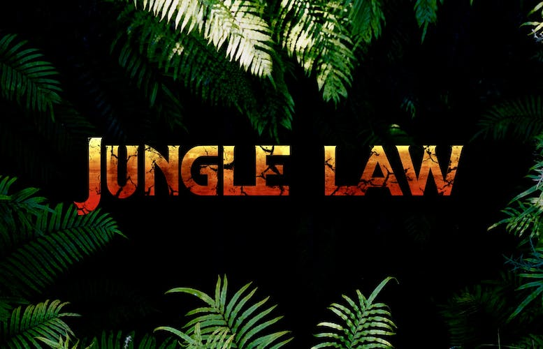Thumbnail for jungle law