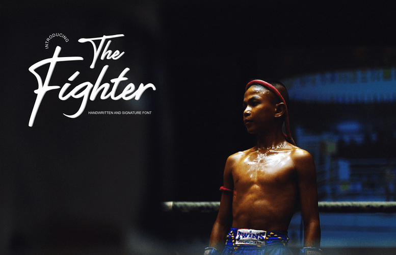 Thumbnail for The Fighter