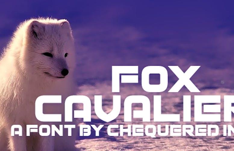 Thumbnail for Fox Cavalier
