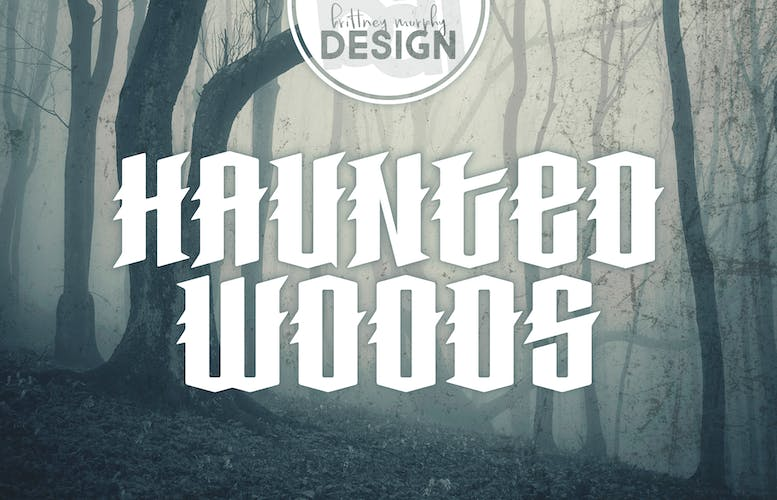 Thumbnail for Haunted Woods